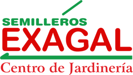 EXAGAL Logo